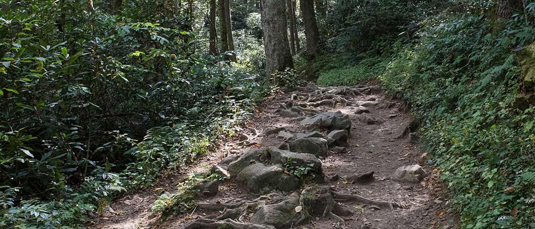 Hiking in the Smokies for Free