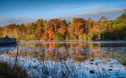 Nature Trails in Gatlinburg