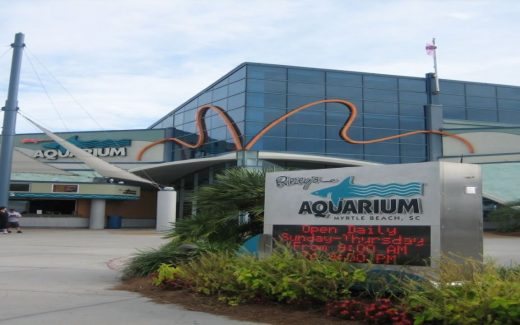 Ripleys Aquarium Myrtle Beach