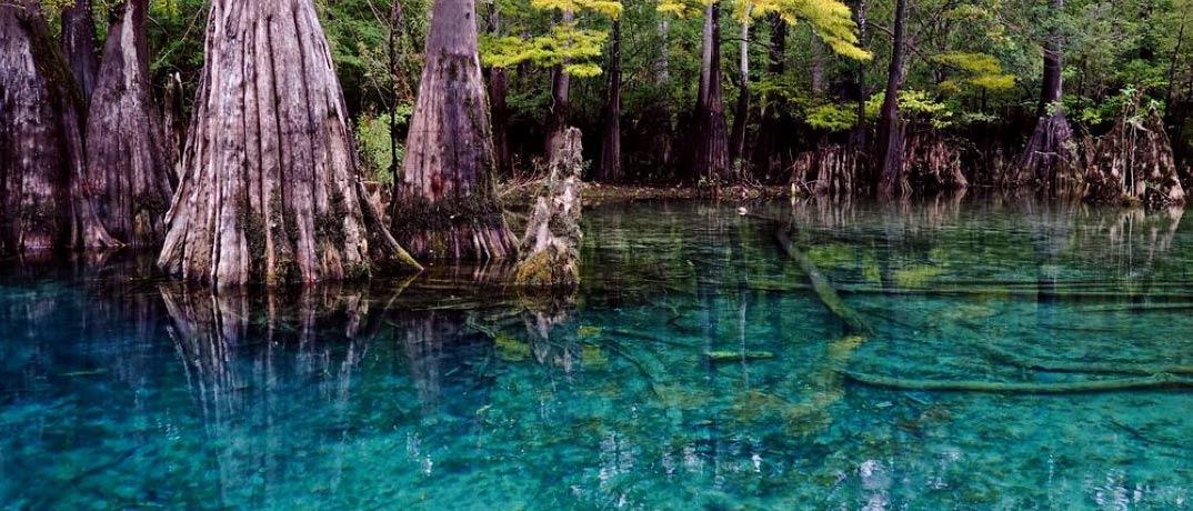 Morrison Springs Water