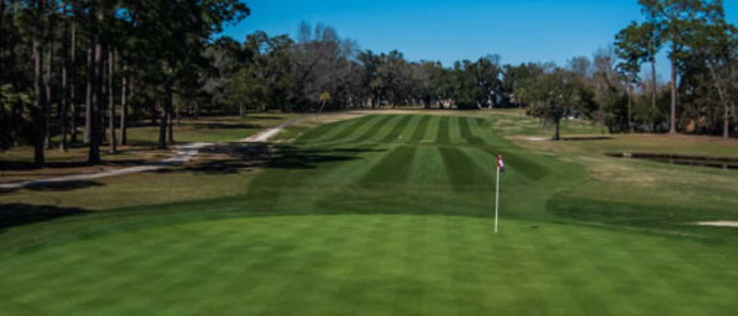 Holiday Golf Club PCB