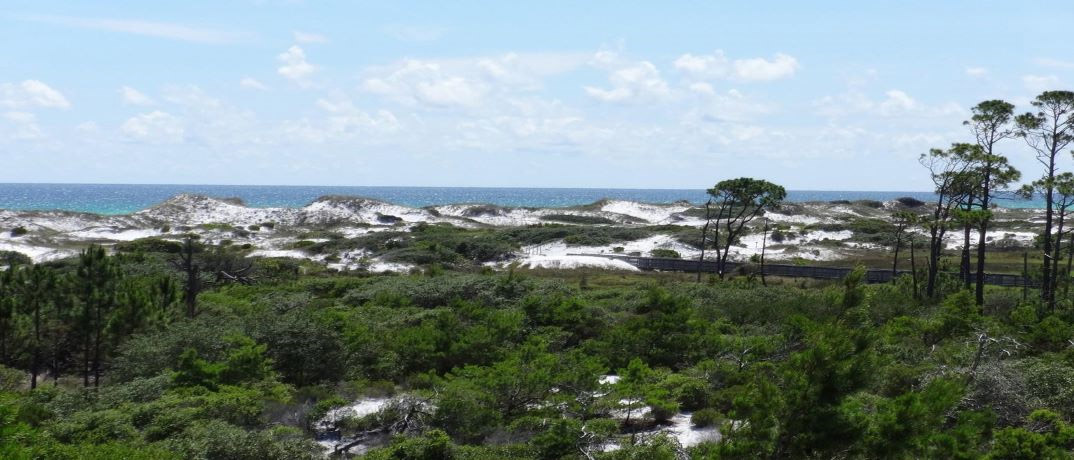 Top Sail Hill Preserve 30A