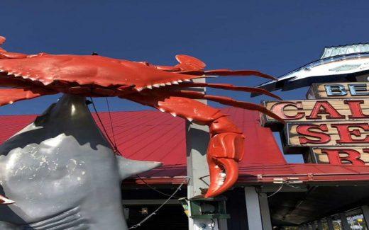 North Myrtle Beach SC Vacation Guide | North Myrtle Beach Fun