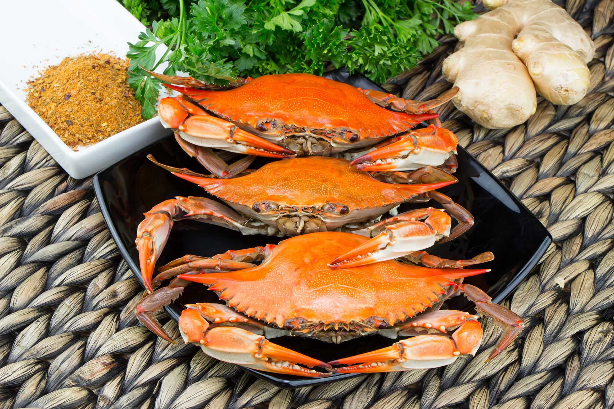 World Famous Blue Crab Festival Little River May 19 20 2018
