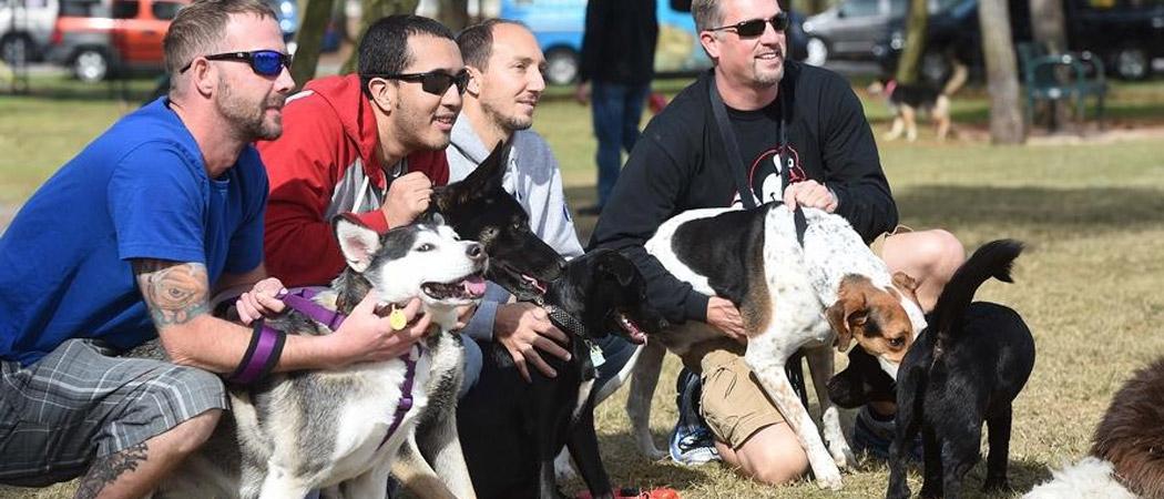 Destin 5K Dog Run