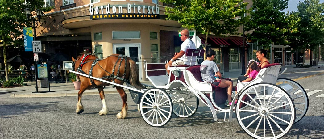 Carriage Ride in Market Common