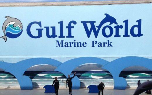 gulf-world-marine-park-main