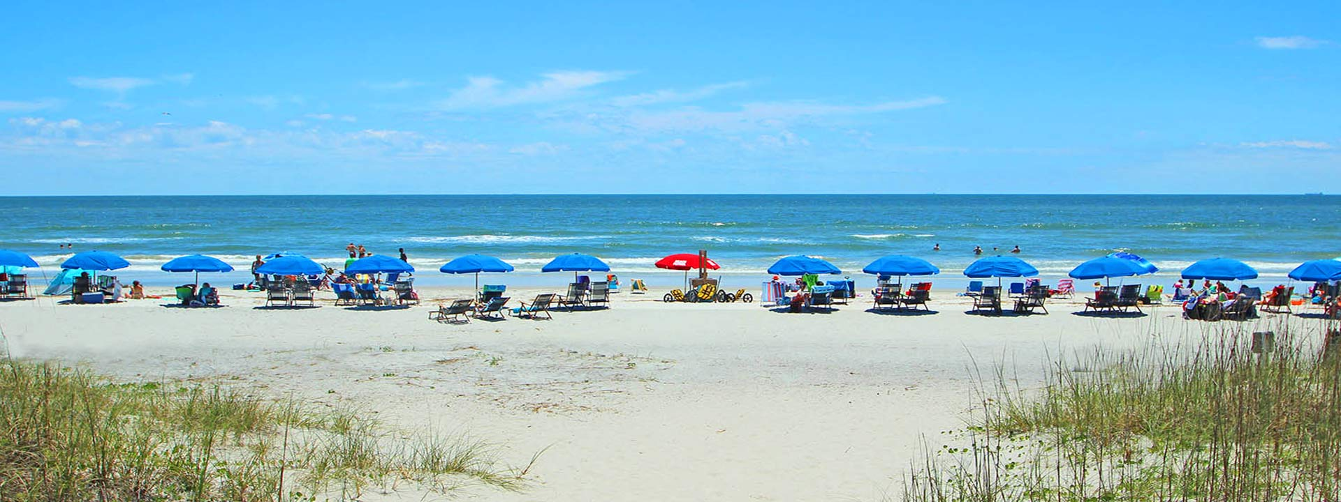 Hilton Head Beach Rules Amp Laws Condo World Hilton Head