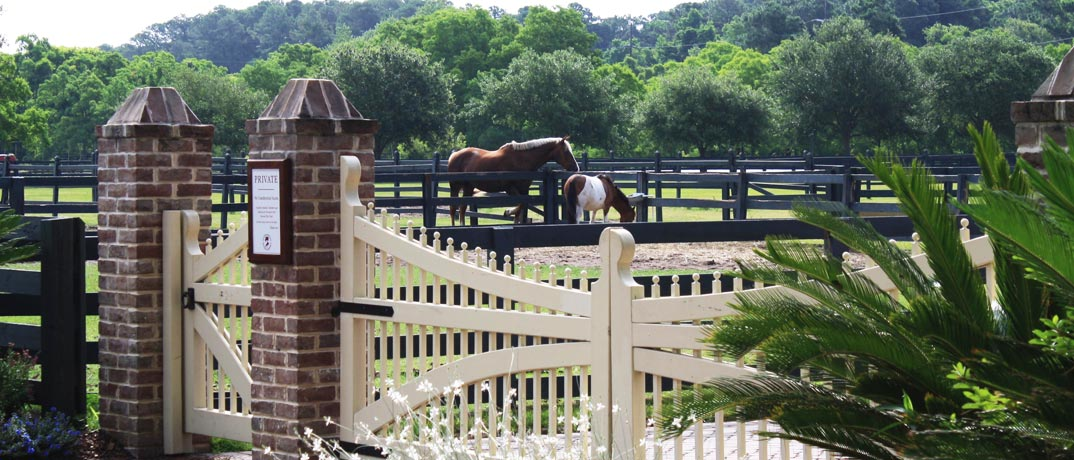 Horse Ride Stables