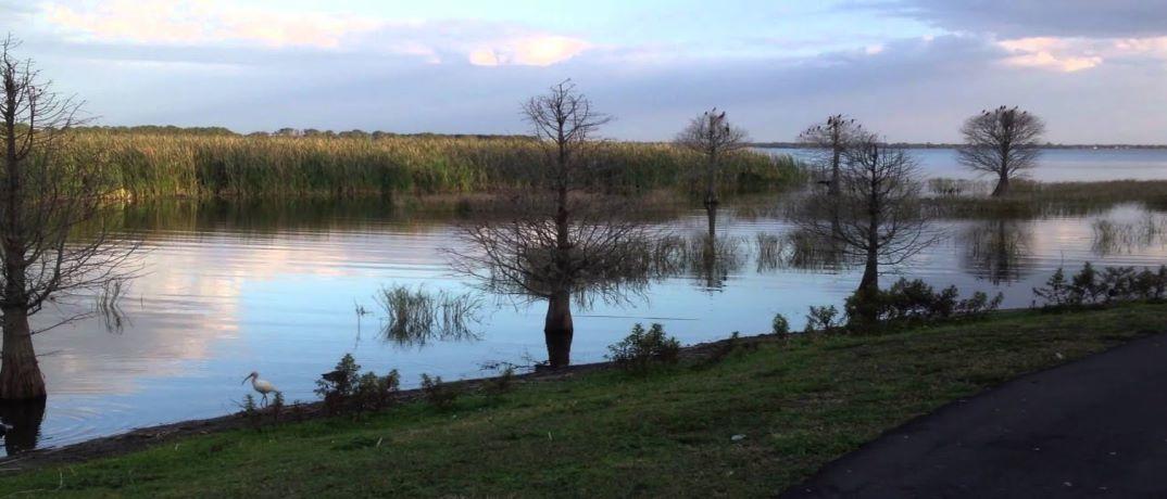 Lake Parker Orlando