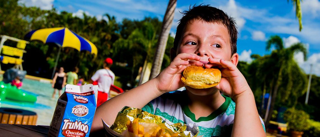 Dining At Legoland Water Park