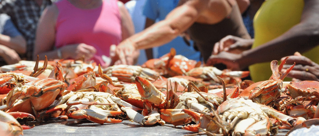 Little River Blue Crab Festival