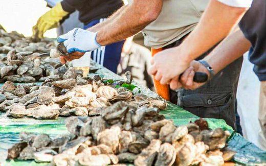 Murrells Inlet Oyster Roast - November 2017