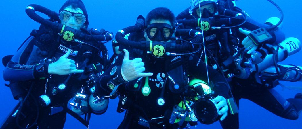 Divers in Panama City Beach