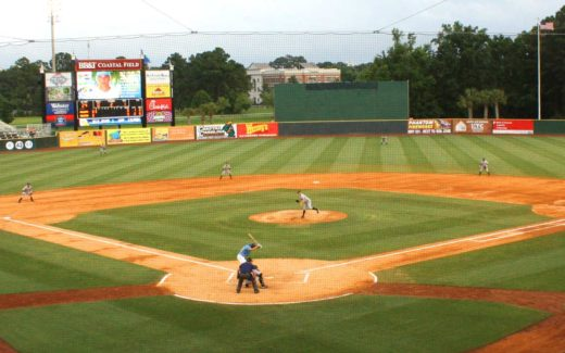 Take Me Out To The Ball Game | Myrtle Beach Pelicans Baseball