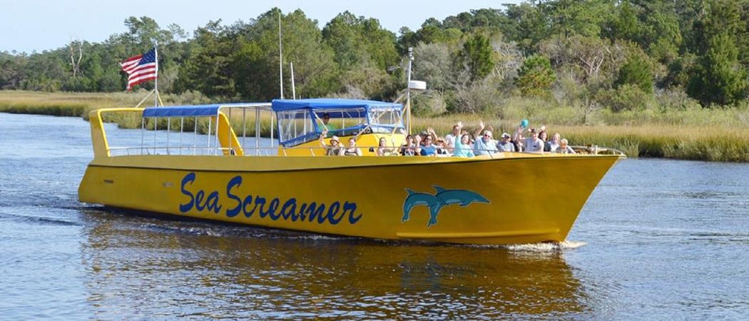 Sea Screamer Dolphin Cruise