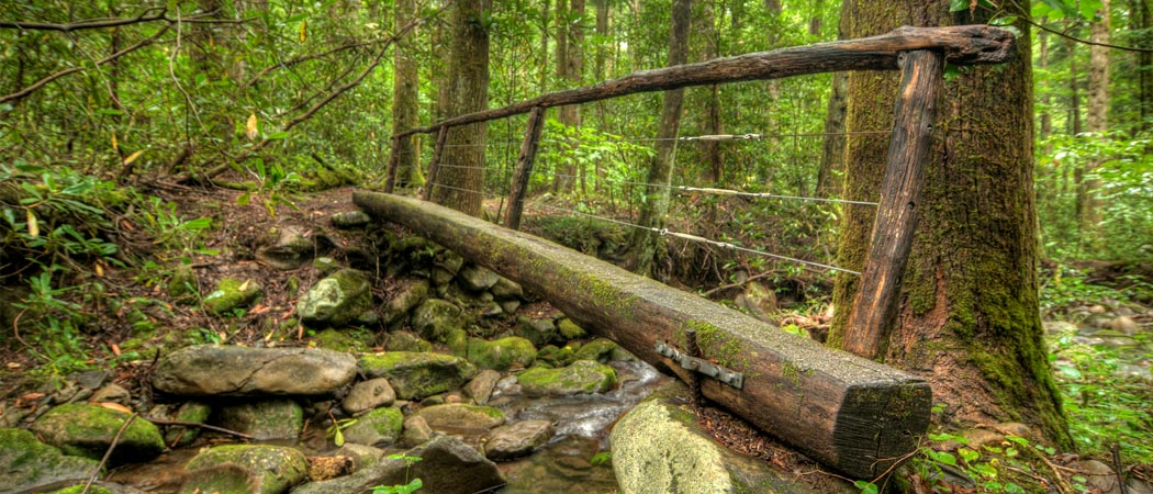 The Gatlinburg Trail