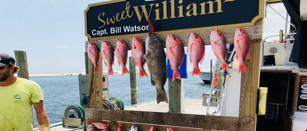 Deep Sea Fishing Aboard The Sweet William III