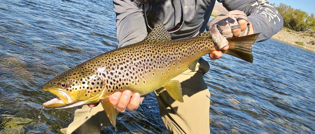 Top Fishing Spots