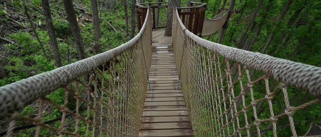 The Treetop Skywalk & Treehouse Village Adventure