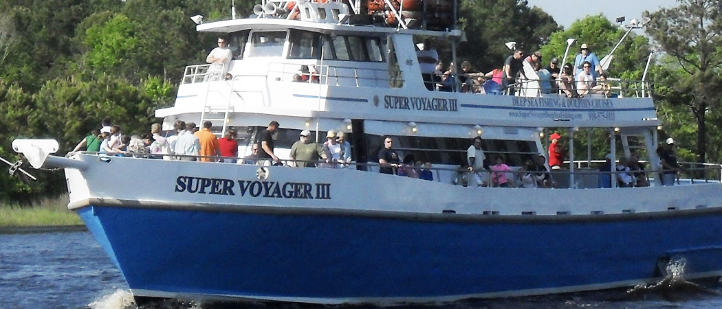 Voyager Dolphin Cruise